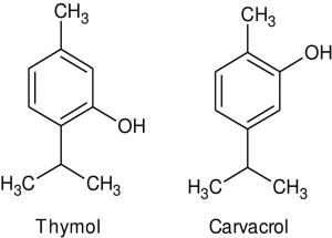 Công thức hóa học của 2 tinh chất Thymol và Carvacrol