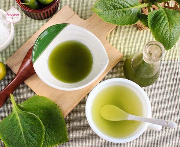Uống trà húng chanh chữa bệnh viêm mũi dị ứng